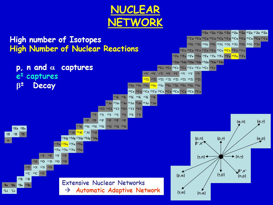 NUCLEAR NETWORK High number of Isotopes