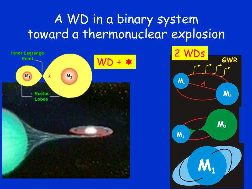 A WD in a binary system toward a thermonuclear explosion