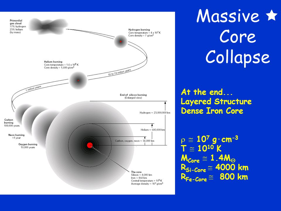 Massive  Core Collapse