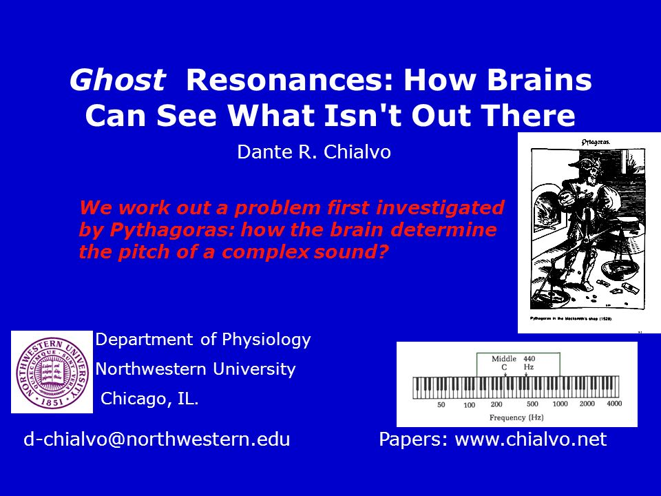 Ghost Resonances: How Brains Can See What Isn t Out There