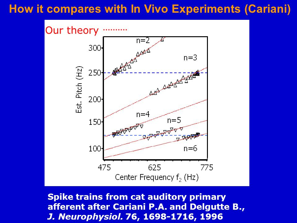 How it compares with In Vivo Experiments (Cariani)
