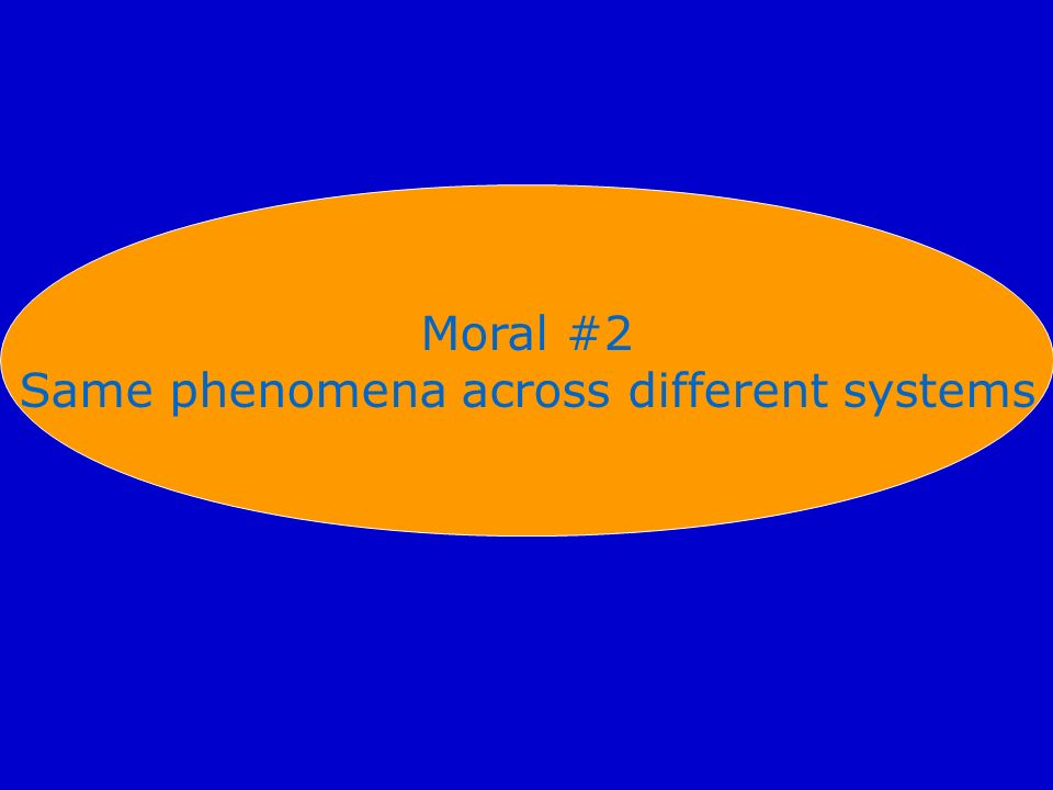 Same phenomena across different systems