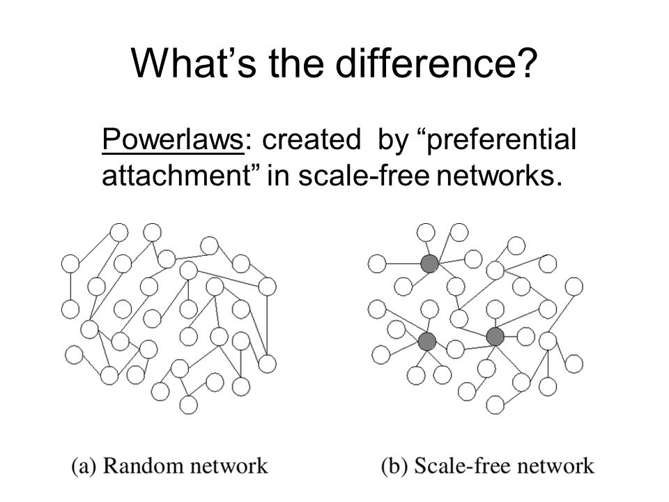 What's the difference Powerlaws: created by preferential attachment in scale-free networks.