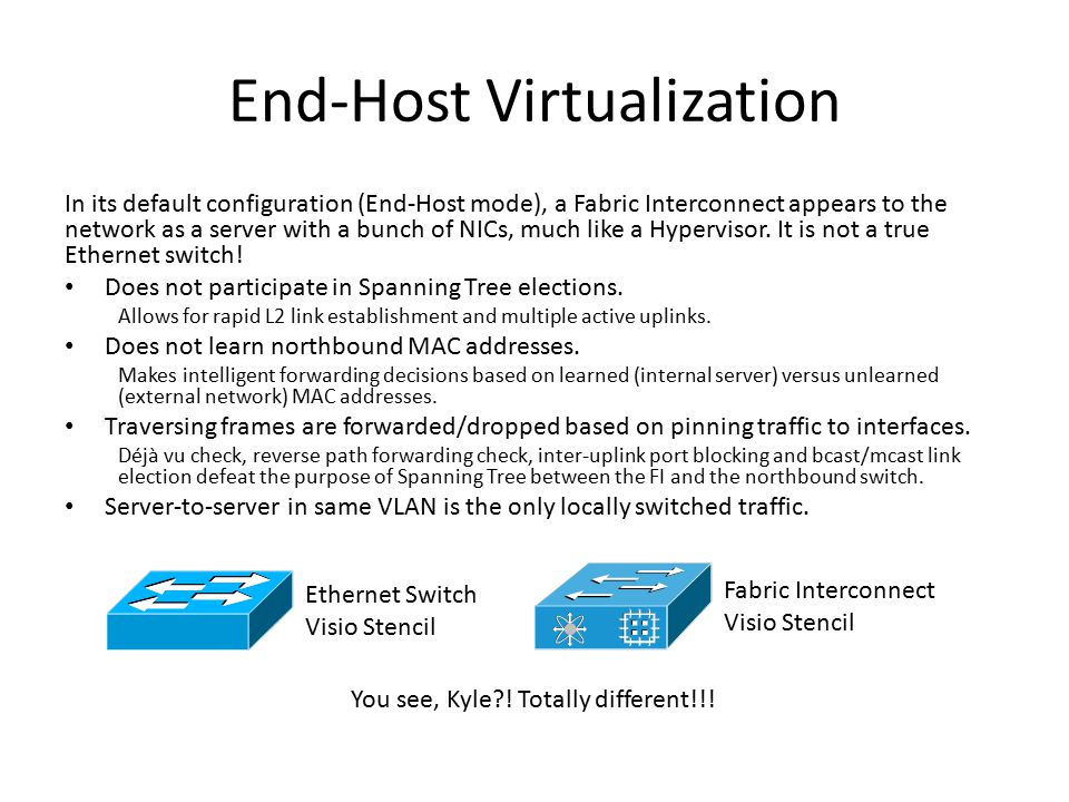 End-Host Virtualization