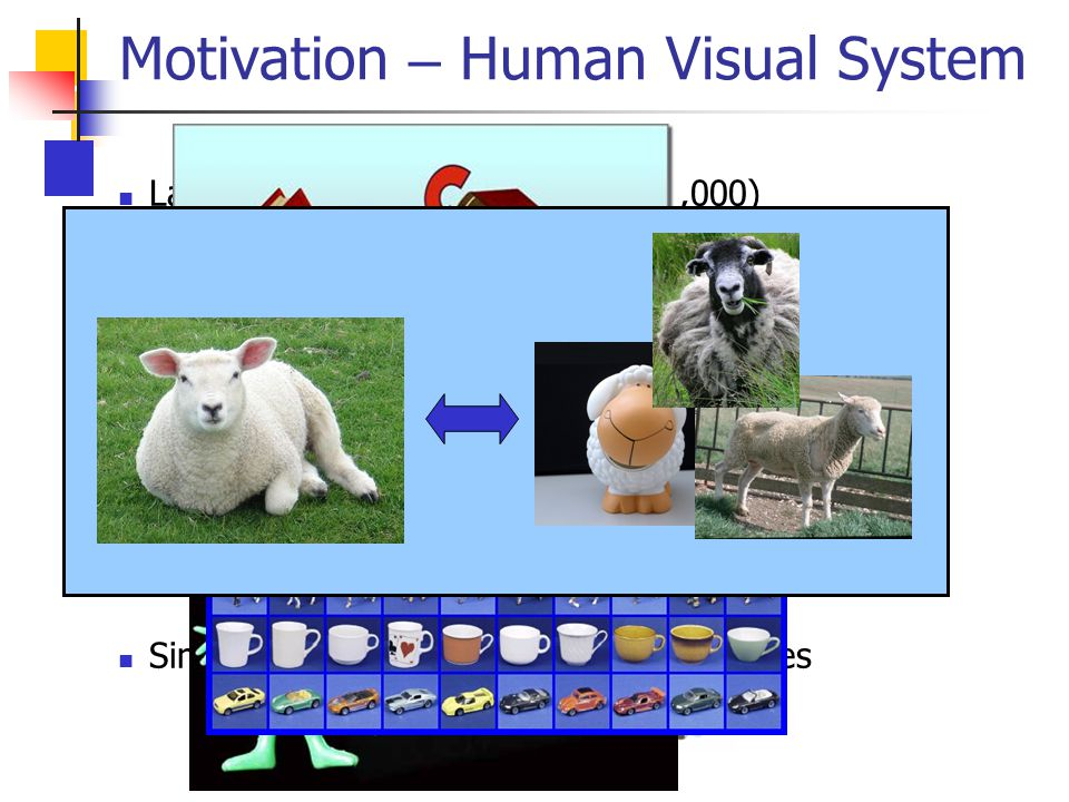 Motivation – Human Visual System