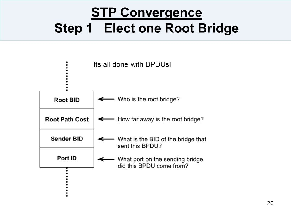 STP Convergence Step 1 Elect one Root Bridge