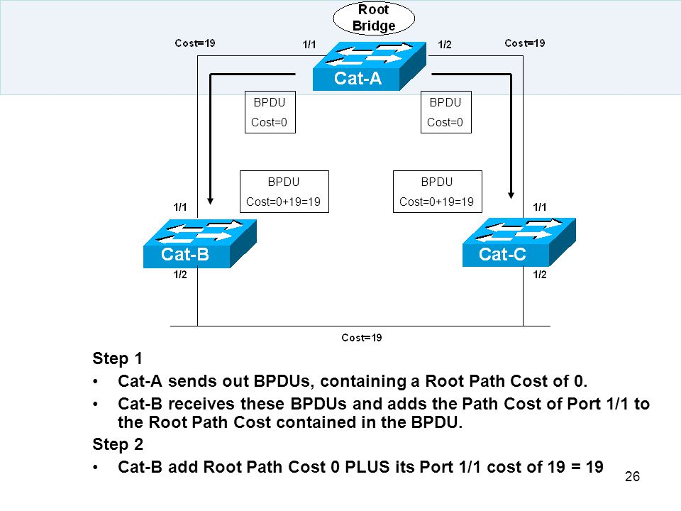 Cat-A sends out BPDUs, containing a Root Path Cost of 0.