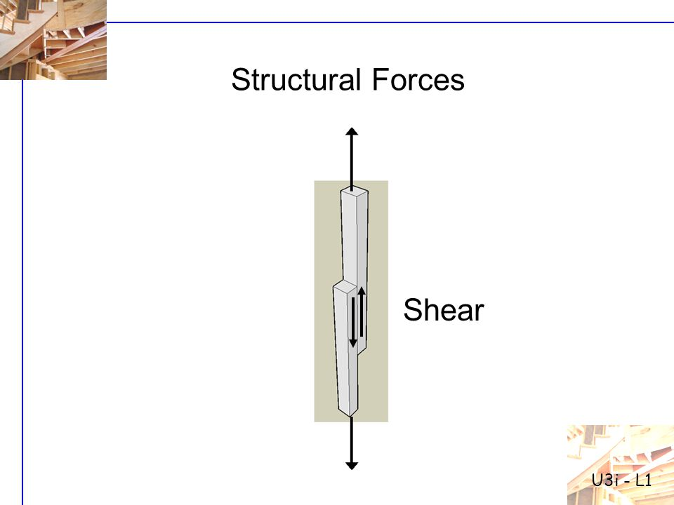 U3i - L1 Structural Forces Shear