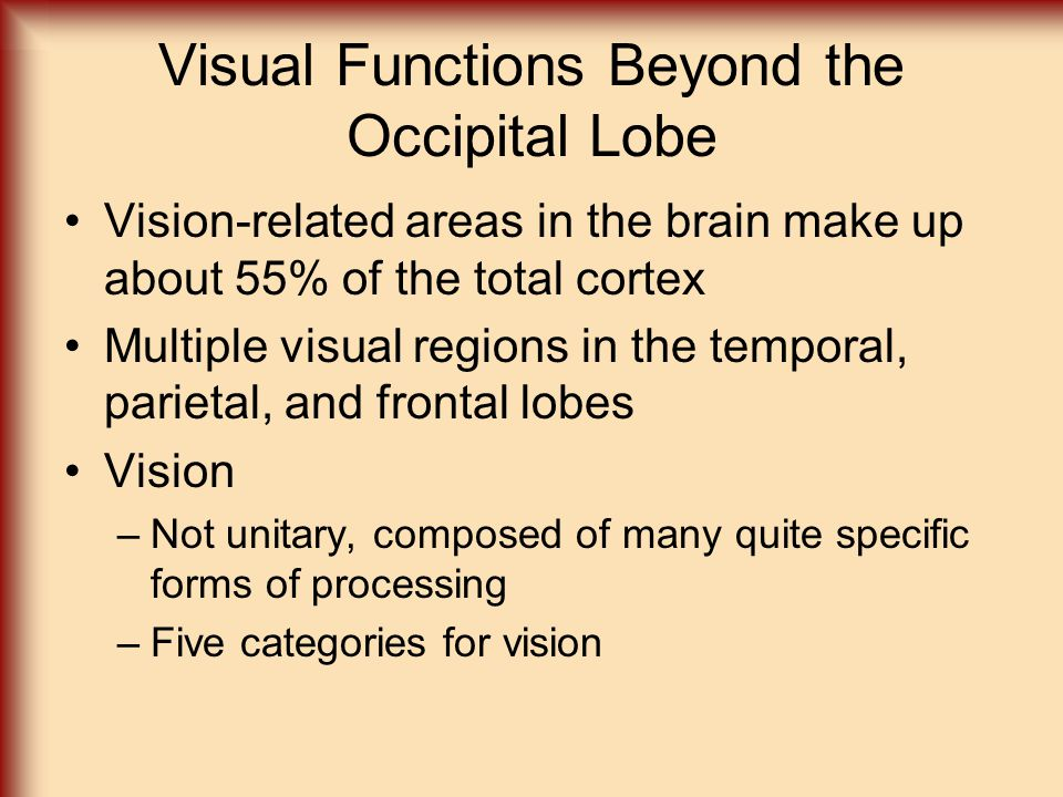 Visual Functions Beyond the Occipital Lobe