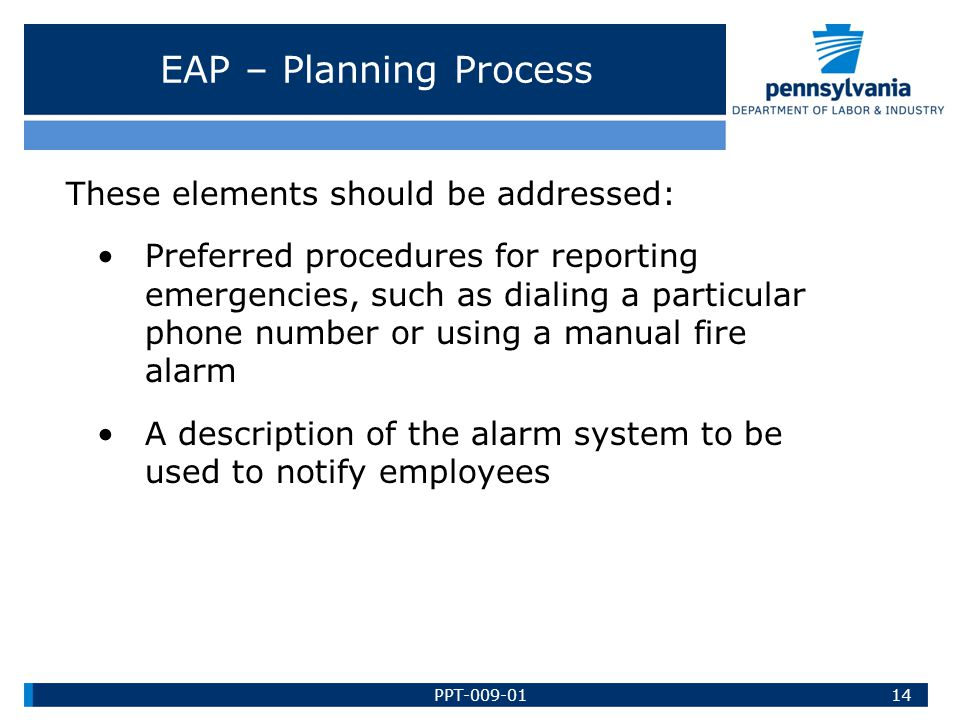 EAP – Planning Process These elements should be addressed: