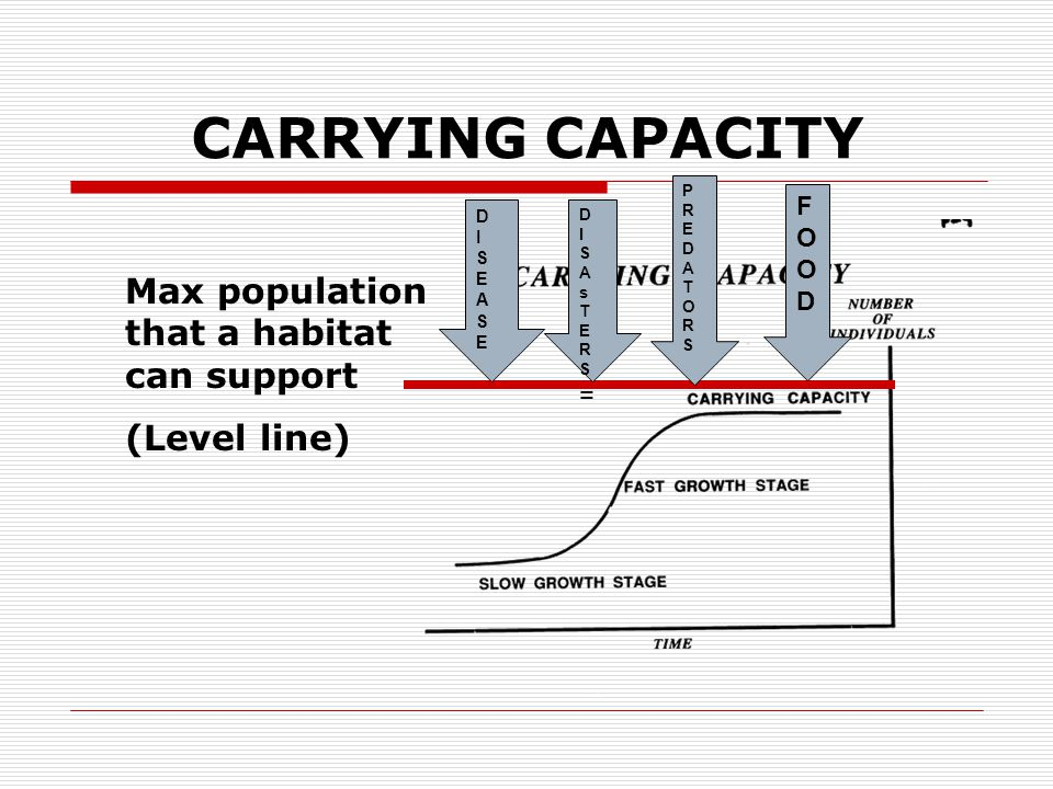 CARRYING CAPACITY Max population that a habitat can support