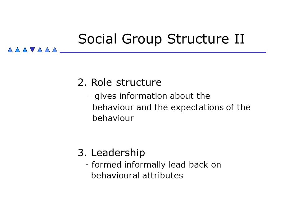 Social Group Structure II