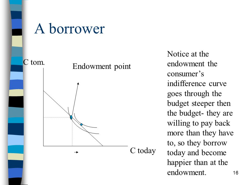A borrower