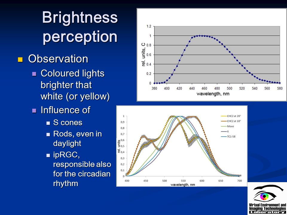 Brightness perception