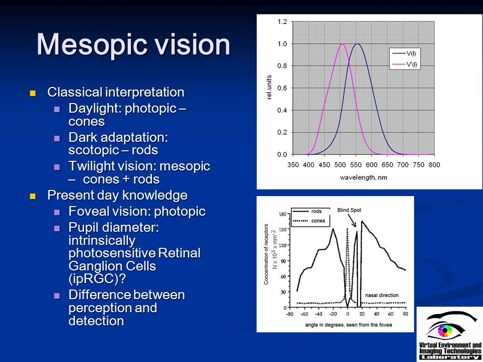 Mesopic vision Classical interpretation Daylight: photopic – cones