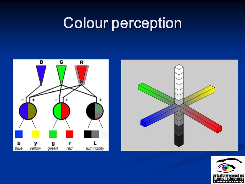 Colour perception