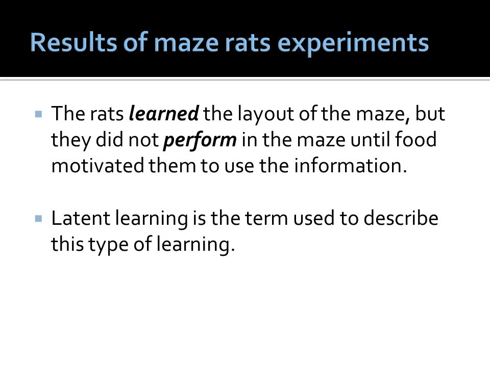 Results of maze rats experiments