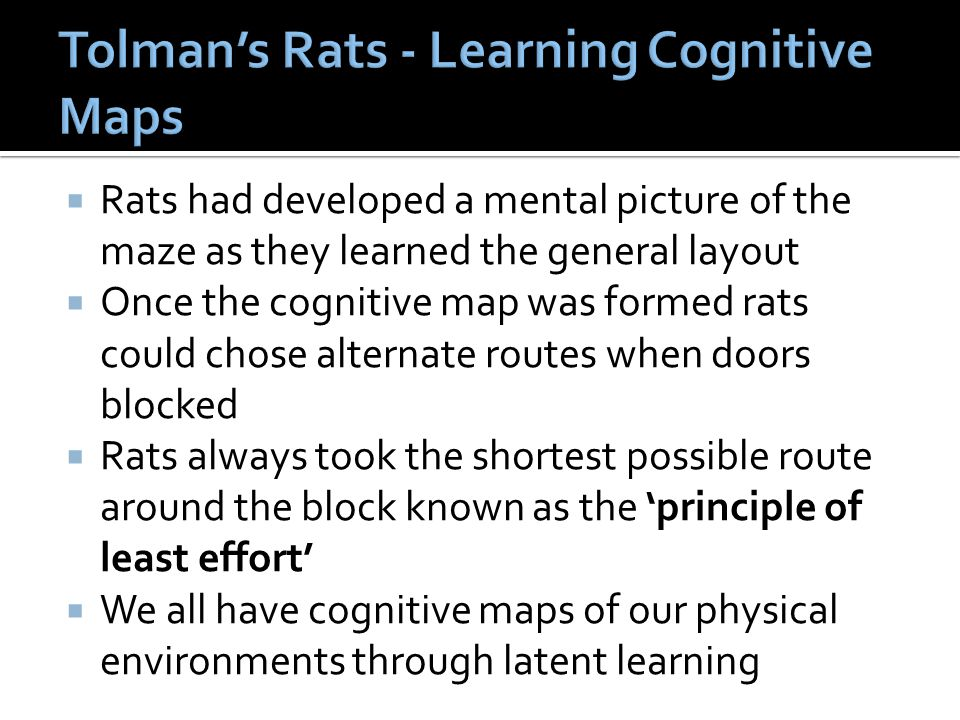 Tolman's Rats - Learning Cognitive Maps