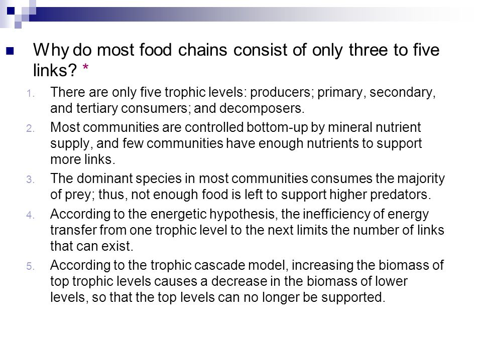 why do most food chains consist of only three to five links