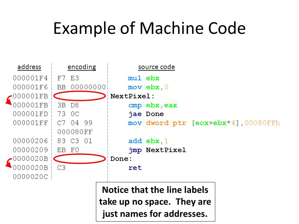 Example of Machine Code