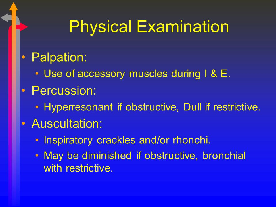Physical Examination Palpation: Percussion: Auscultation: