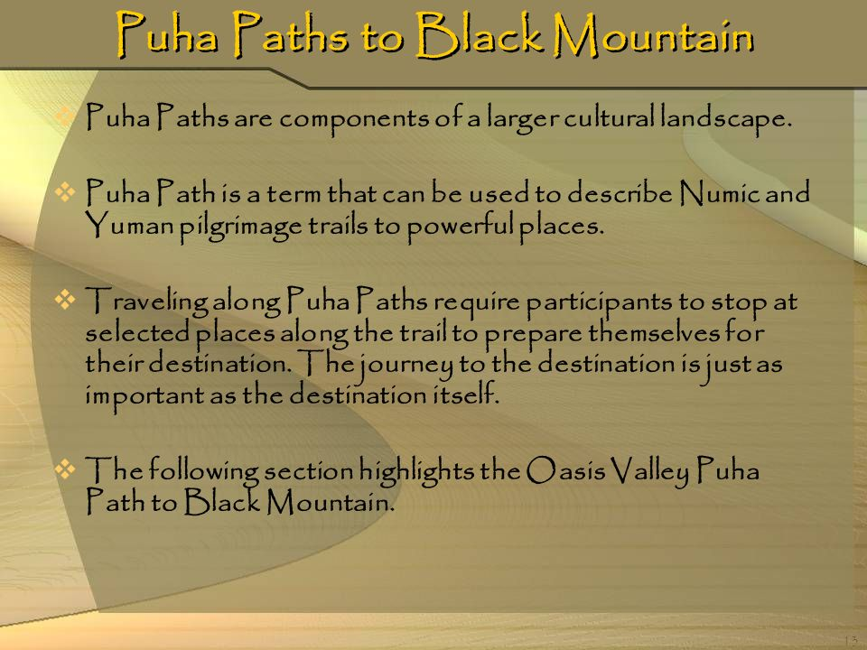 Puha Paths to Black Mountain