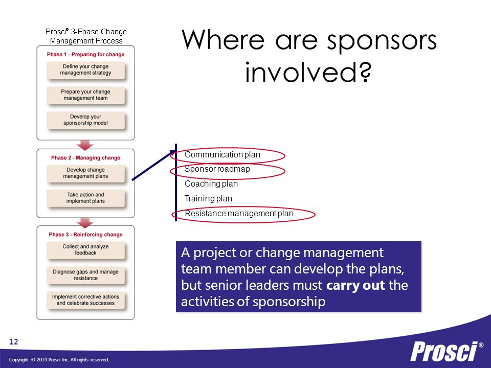 Sponsorship and the Sponsor Assessment Diagram - ppt video