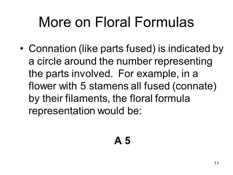 Floral formulas and diagrams ppt download more on floral formulas ccuart Images