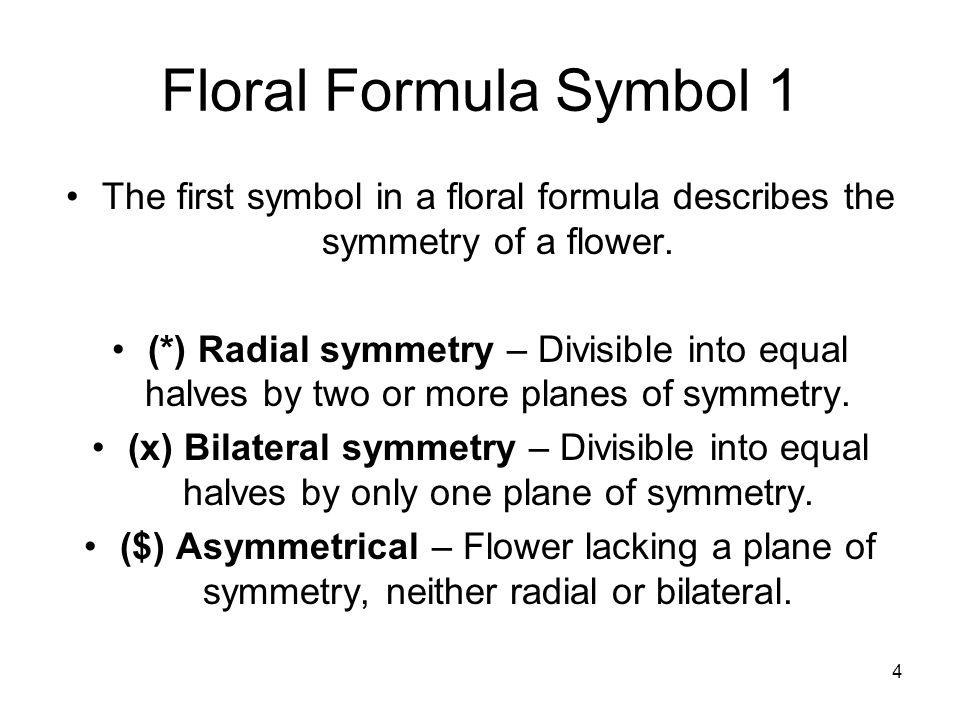 Floral formulas and diagrams ppt download 4 floral ccuart Images