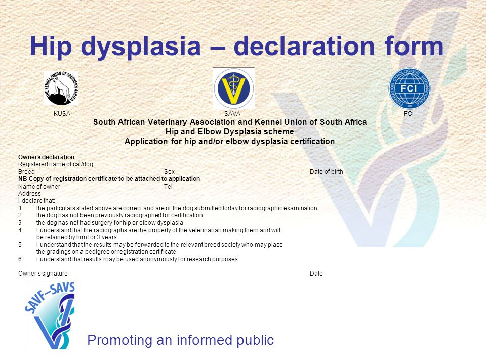 South African Veterinary Foundation Ppt Download