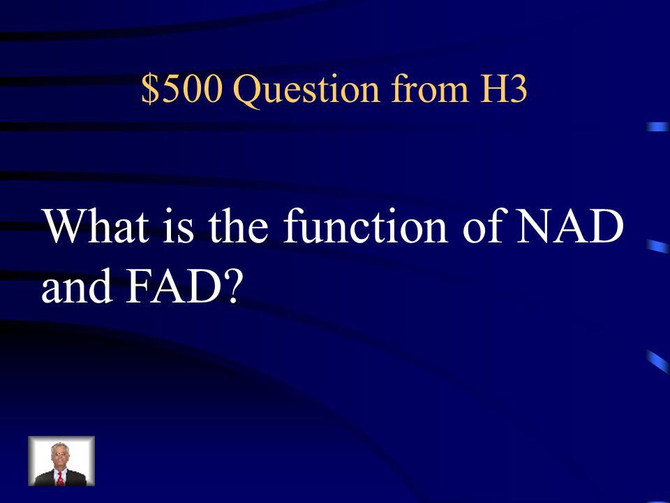 What is the function of NAD and FAD