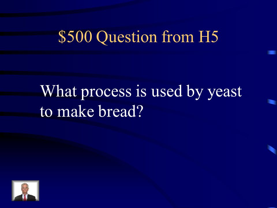 $500 Question from H5 What process is used by yeast to make bread