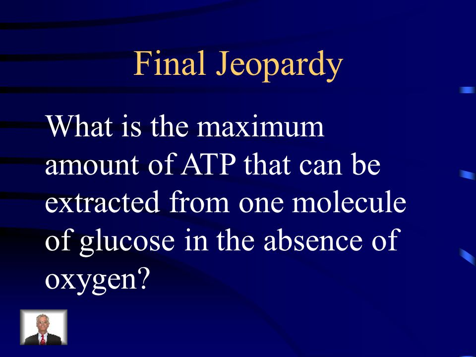 Final Jeopardy What is the maximum amount of ATP that can be extracted from one molecule of glucose in the absence of oxygen