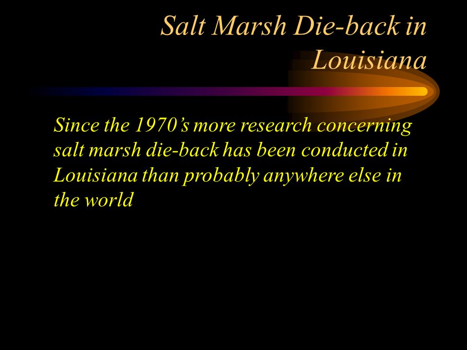 Salt Marsh Die-back in Louisiana