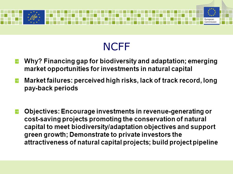 NCFF Why Financing gap for biodiversity and adaptation; emerging market opportunities for investments in natural capital.