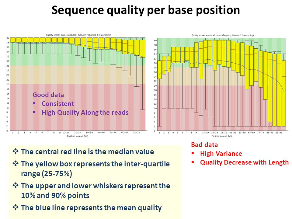 Sequence quality per base position