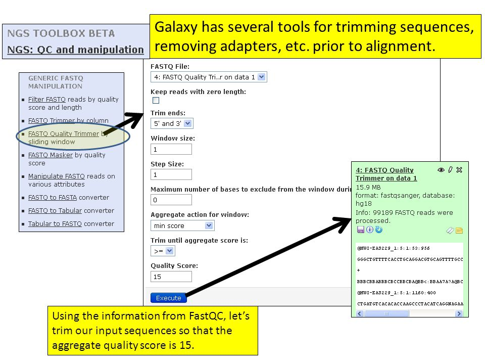 Galaxy has several tools for trimming sequences, removing adapters, etc. prior to alignment.