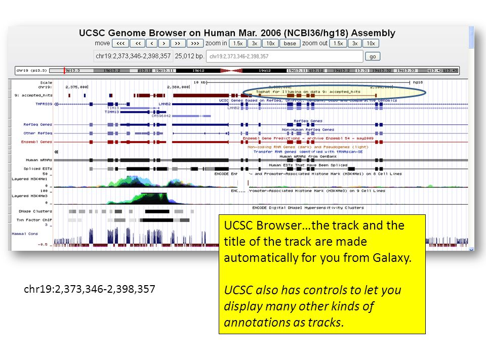 UCSC Browser…the track and the title of the track are made automatically for you from Galaxy.