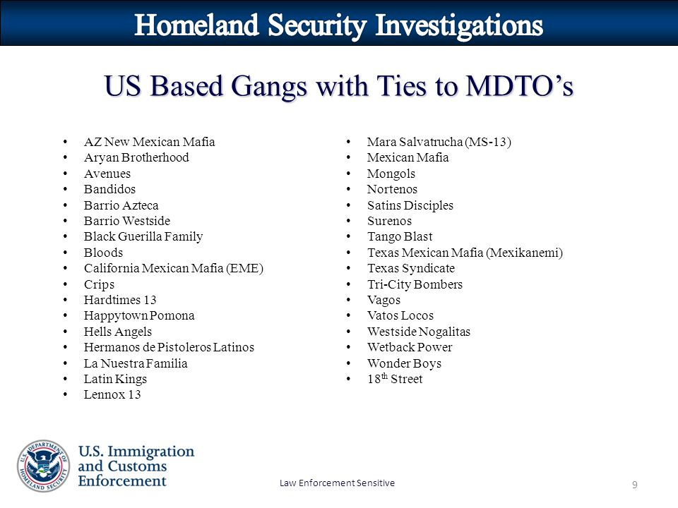 Homeland Security Investigations - ppt video online download