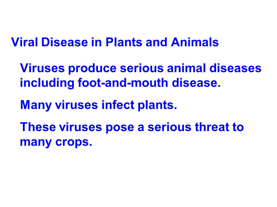 Viral Disease in Plants and Animals