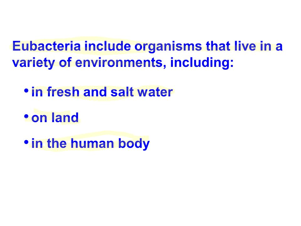 Eubacteria include organisms that live in a variety of environments, including: