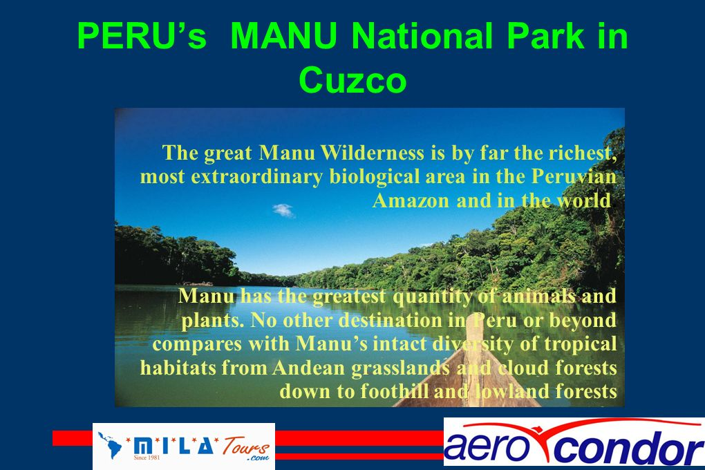 PERU's MANU National Park in Cuzco