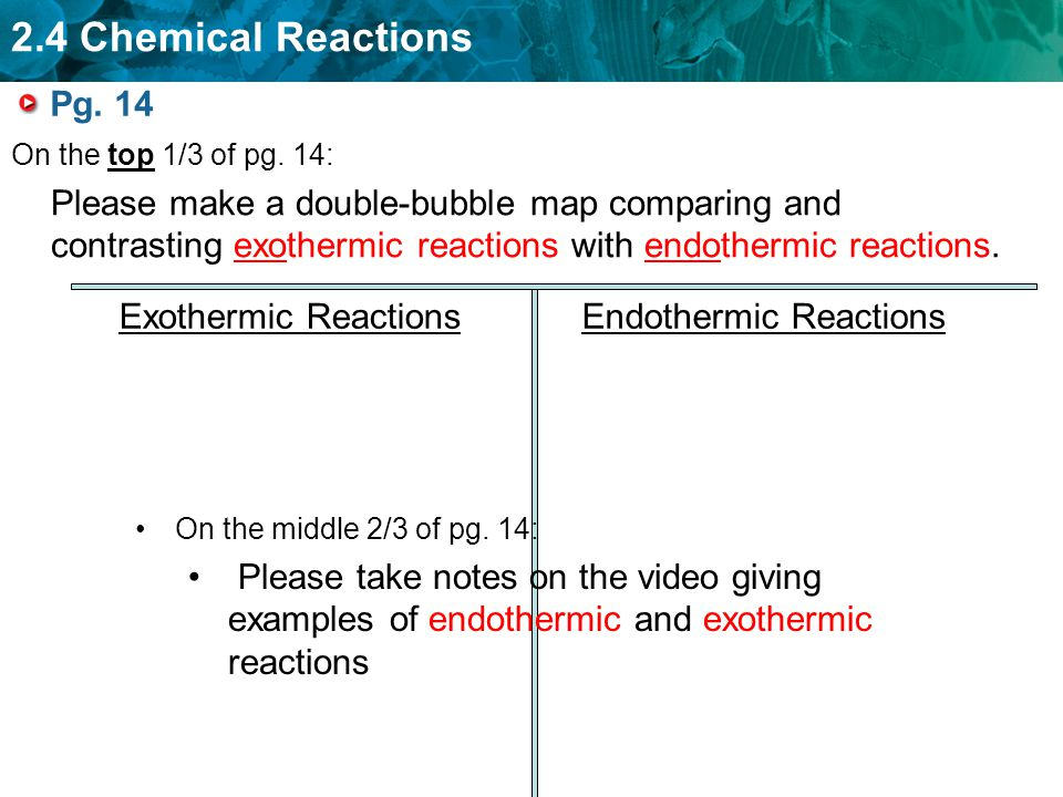 contrast exothermic and endothermic reactions