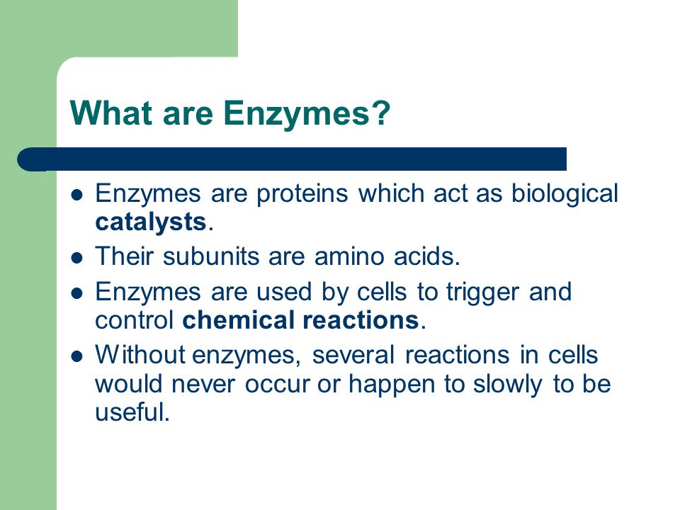 What are Enzymes Enzymes are proteins which act as biological catalysts. Their subunits are amino acids.