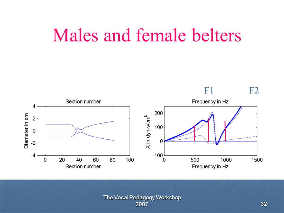 Males and female belters