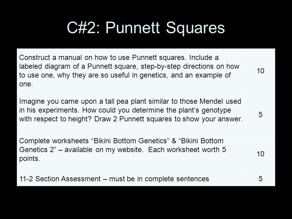 Pun t Square Lesson Plans   Worksheets   Lesson Pla likewise C  Mendel's Principle of Dominance   ppt download further Pun t Square Worksheet One Key   Briefencounters moreover It Is A Square Worksheet Square Worksheets Perfect Square Worksheets further ch 9 pun  square worksheet together with Pun t Square Worksheet – WIRING DIAGRAM as well 4   mshollis together with Mendelian Ge ics   Simple Inhertiance  So Who's Mendel  An as well  in addition Unled likewise  additionally Pun t Square Worksheet 1 also Pun t Square Worksheet Characteristics The best worksheets moreover Unled likewise Ge ics Problems Worksheet Heredity Biology Worksheets High as well Using Pun t 039 s Square To Show Mendel 039 s Ge ics Discoveries. on pea plant punnett square worksheet