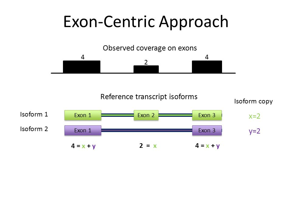 Exon-Centric Approach