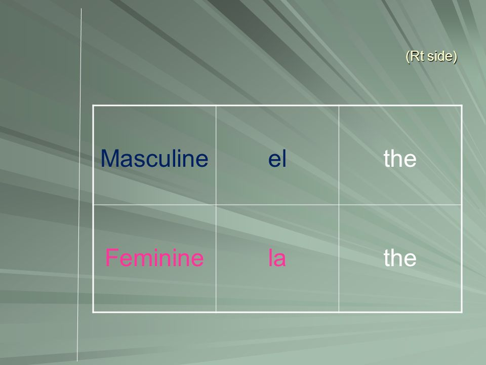 (Rt side) Masculine el the Feminine la