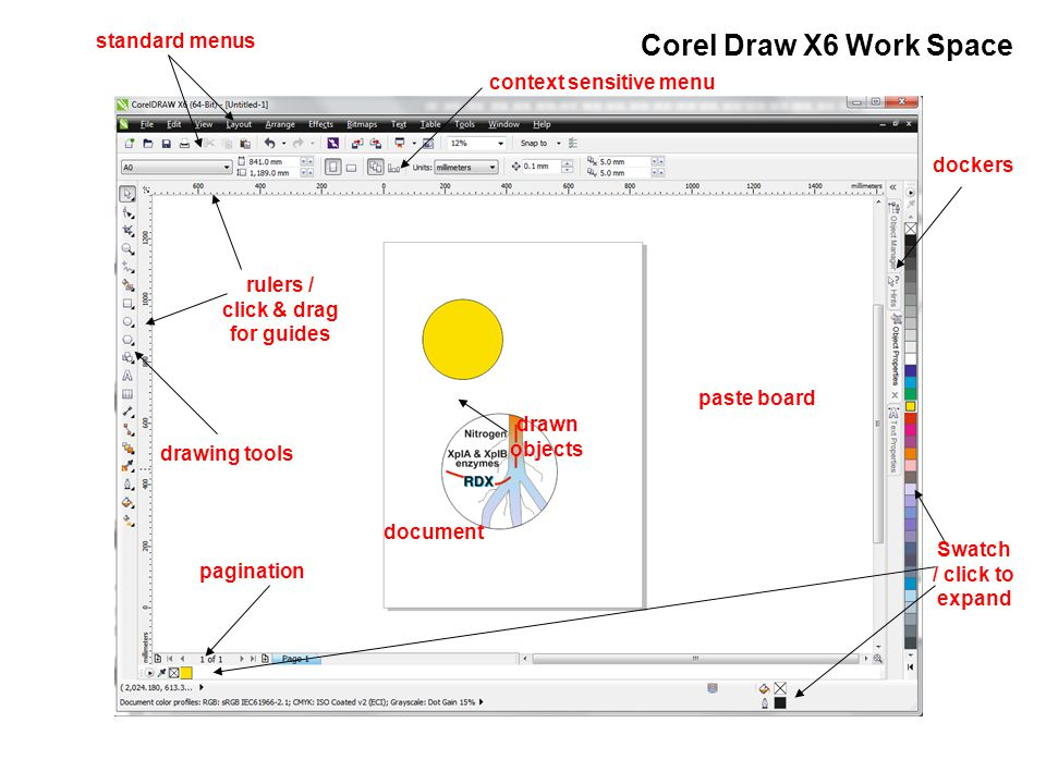 Biology Biology Photo-Graphics Corel Draw X6, for poster