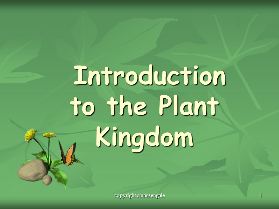 Introduction to the Plant Kingdom